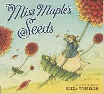 miss maples seeds